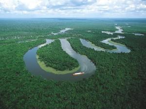 amazon_river1